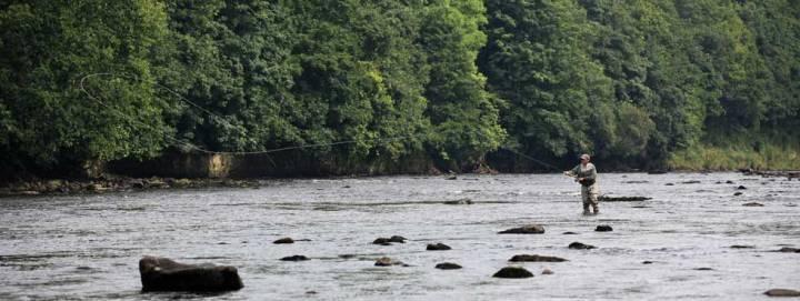 salmon_fishing_slider_05